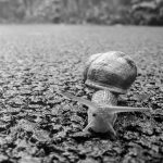 nature-sand-rock-black-and-white-white-photography-419409-pxhere.com
